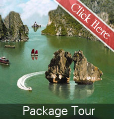 Package tour alova cruises + hotel